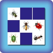 Memory game for kids - insects - online and free
