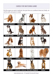 Free printable memory game for seniors - dog breeds