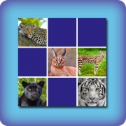 Memory game for kids - Cats - online and free