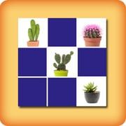 Memory game for seniors - Cactus - online and free