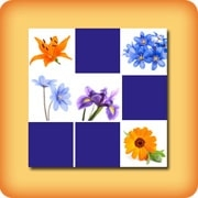 Memory game for seniors - Flowers 2 - online and free