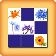 Memory game for seniors Flowers 2