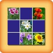 Memory game for seniors - Flowers - online and free