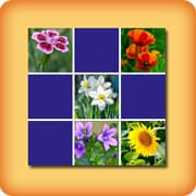 Memory game for seniors Flowers
