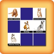 Memory game for seniors - dog breeds
