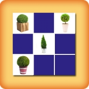 Memory game for seniors - Boxwood - online and free