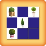 Memory game for seniors Boxwood