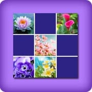 Memory game 2 player - flowers