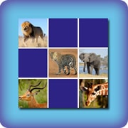 Memory game for kids - African animals - online and free