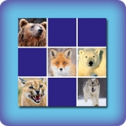 Memory game for kids - Wild animals - online and free