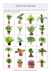 Free printable memory game for seniors - plants