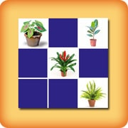 Memory game for seniors - Green plants - online and free
