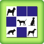 Black dogs Memory games
