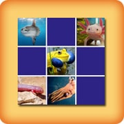 Memory game - Strange animals - online and free