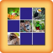 Memory game for seniors - Tropical animals - online and free