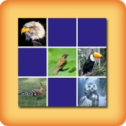 Memory game for seniors - Birds - online and free