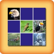 Matching game for seniors - Birds - online and free