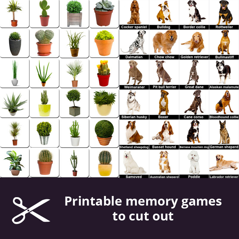 graphic about Printable Memory Games for Seniors identify Cost-free printable memory online games for seniors - Print and slash out