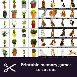 Printable and free memory games for seniors