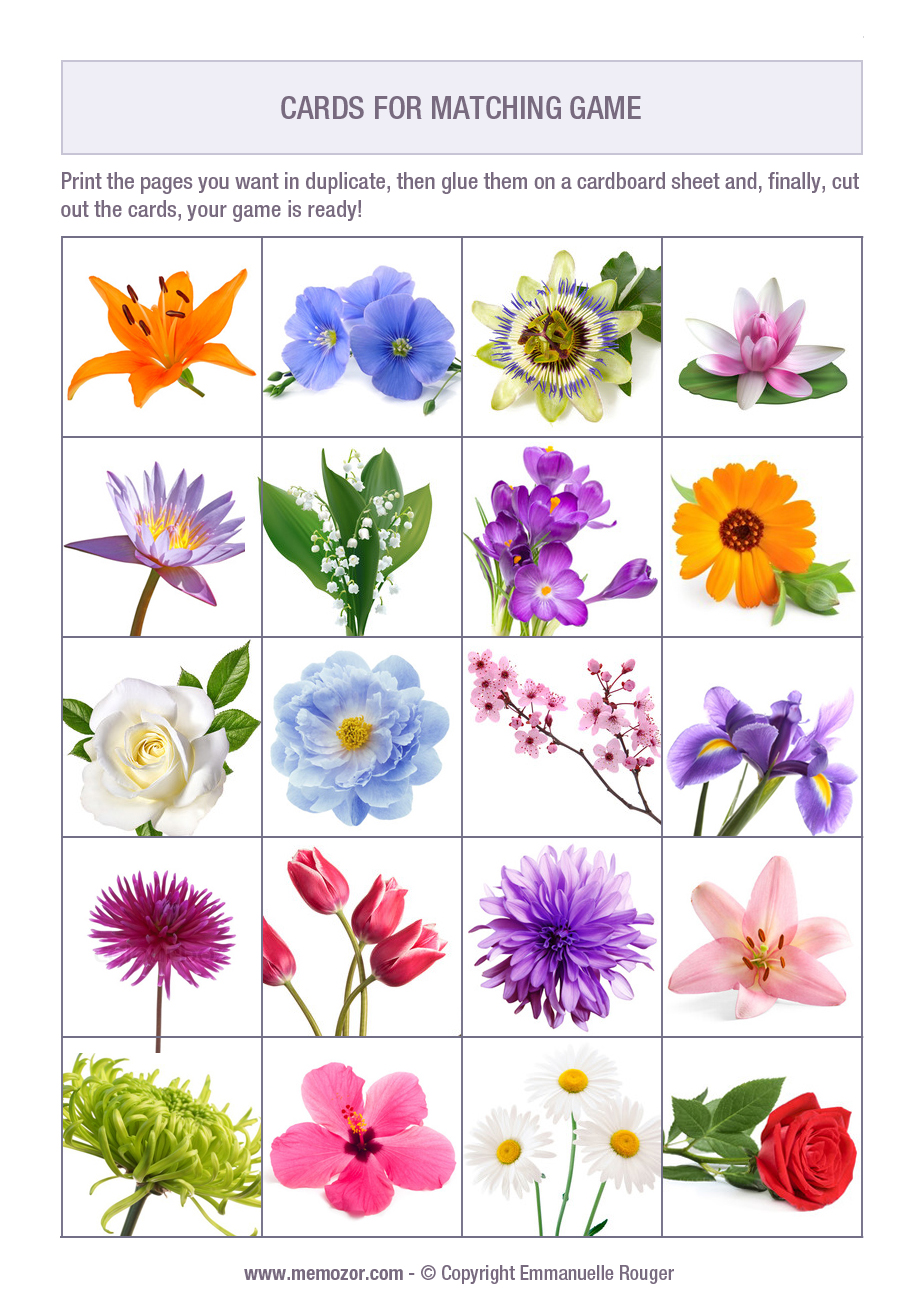 picture regarding Printable Memory Cards identify Cost-free printable memory recreation for seniors - Bouquets - Print and