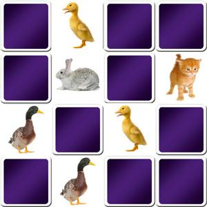 baby animal templates