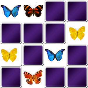 Online memory game for seniors - butterfly