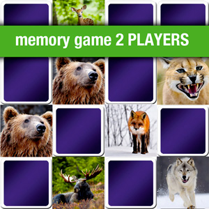 memory game 2 players - animals