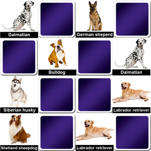 memory game animals - dog breeds
