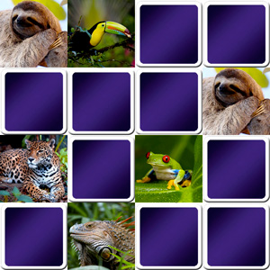 Online memory game for seniors - tropical animals