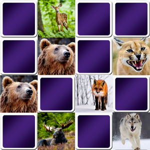 difficult animals memory game for seniors