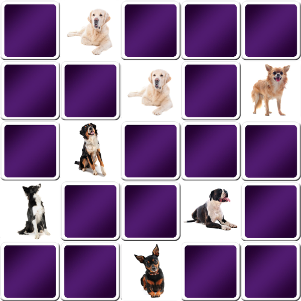 Dog Breeds Test Free Online