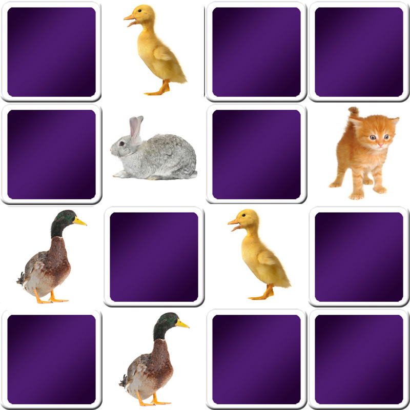 Play Memory Game Animals Online And Free Game