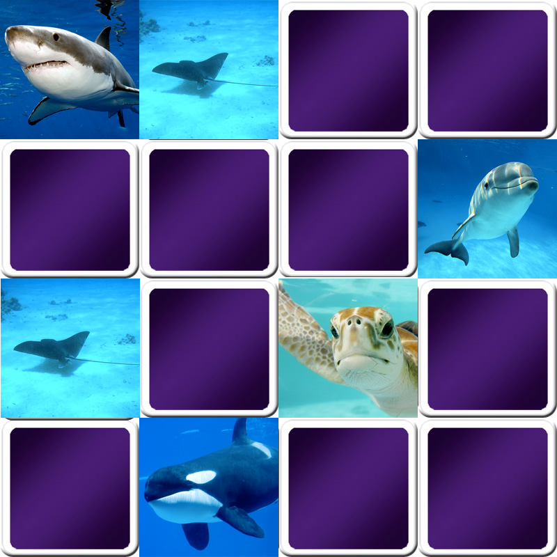 Play memory game for kids - Marine animals - Online and free